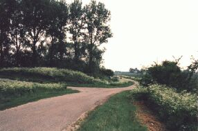 road to  the Rosevelt near Oud-Vossemeer