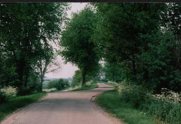 road from the Rosevelt to Oud-Vossemeer